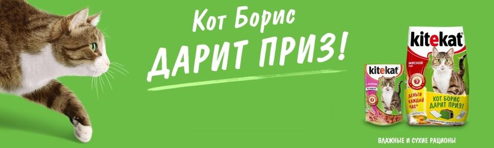 Акция корм кот Борис 2019